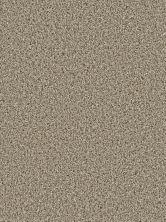 Dream Weaver Cosmopolitan Tumbleweed 5755_883
