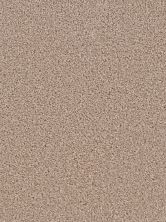 Dream Weaver Broadcast Flax Beige 3025_535