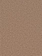 Dream Weaver Broadcast Sandstone 3025_715