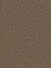 Dream Weaver Exceptional II Black Walnut 7404_540
