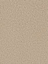 Dream Weaver Exceptional II Cashmere 7404_580