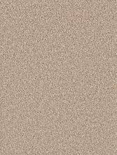 Dream Weaver Exceptional II Sawgrass 7404_701