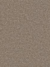 Dream Weaver Exceptional II Tumbleweed 7404_829