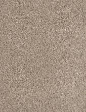 Dream Weaver Metropolitan Tumbleweed 9400_883