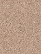 Dream Weaver Serenity Sand 9580_710