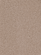 Dream Weaver Serenity Taupe 9580_775