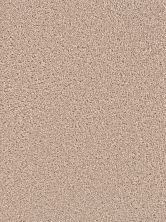 Dream Weaver Broadcast Plus Flax Beige 3125_535