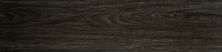 Emser Woodwork Porcelain Matte/Satin Salem F78WOODSA0624
