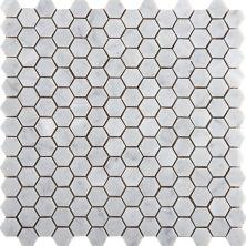 Emser Marble Bianco Gioia Marble Honed Bianco Gioia M05BIANGI1212HHX