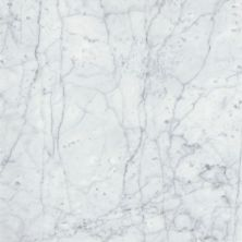 Emser Marble Bianco Gioia Marble Polished Bianco Gioia M05BIANGI1818