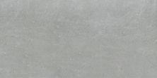Emser Potenza Porcelain Matte Dove F12POTEDO1224V2