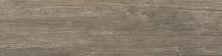 Emser Attic Ceramic Camel F60ATTICA0624