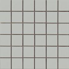 Emser Impact Porcelain Matte Gray F11IMPAGR1212MOM