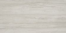 Emser Terrane Porcelain Matte/Satin Beige F45TERRBE1224