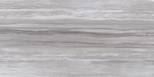 Emser Ciudad Ceramic Matte/Satin Gray F84CIUDGR1224