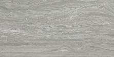 Emser Terrane Porcelain Matte/Satin Gray F45TERRGR1224
