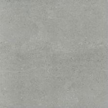 Emser Potenza Porcelain Matte/Satin Dove F12POTEDO1818V2