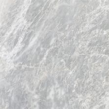 Emser Parian Marble Polished White M10PARIWH2424P