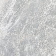 Emser Parian Marble Polished White M10PARIWH2424P