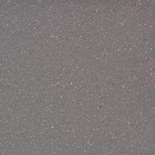 Emser Equarry E-Quarry Matte/Satin Smoke Q10EQUASM0606