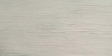 Emser Latitude Porcelain Matte/Satin Ivory F45LATIIV1224