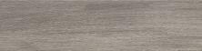 Emser Cabin Porcelain Matte Yosemite F12CABIYO0624