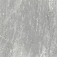 Emser Parian Marble Polished White M10PARIWH1818P