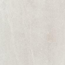 Emser Uptown Porcelain Matte/Satin Sugar Hill A86UPTOSU2424