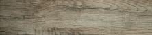 Emser Woodwork Porcelain Matte/Satin Hillsboro F78WOODHI0624