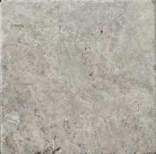 Emser Trav Ancient Tumbled Silver Travertine, Antique & Tumbled Honed, Tumbled & Unfilled Silver T06TRAVSI0404AUT