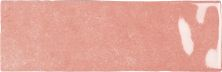 Emser Passion Porcelain Glossy Rosa W32PASSRO0308
