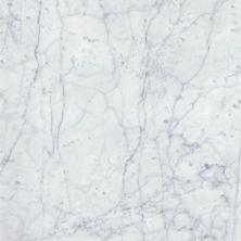 Emser Marble Bianco Gioia Marble Honed Bianco Gioia M01BIANGI1818H