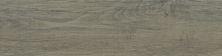 Emser Woodwork Porcelain Matte Hillsboro F78WOODHI0624