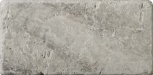 Emser Trav Ancient Tumbled Silver Travertine, Antique & Tumbled Silver T06TRAVSI0306AUT