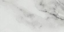 Emser Contessa Porcelain Matte Dama F15CONTDA0306V2