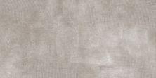 Emser Facade Porcelain Gray F45FACAGR1224