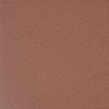 Emser Equarry E-Quarry Matte Brick Q10EQUABR0606