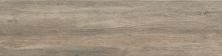 Emser Larchmont Porcelain Matte Canton F12LARCCA0635
