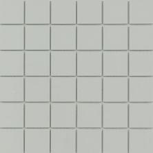 Emser Source Porcelain Matte Gray W71SOURGR