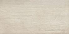 Emser Denova Porcelain Matte/Satin Astoria F47DENOAS1224
