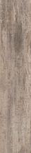 Emser Sanctuary Ceramic Taupe F78SANCTA0839