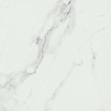 Emser Contessa Porcelain Matte/Satin Dama F15CONTDA1818