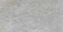 Emser Milestone Porcelain Matte/Satin Moon F86MILEMO2447