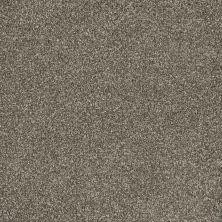 Dream Weaver Posh III Silken Patina 7255_695