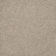 Dream Weaver Astounding II Fine Details 2545_259