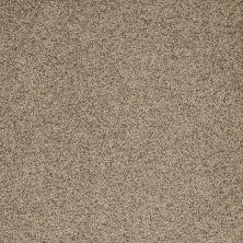 Dream Weaver Astounding II Fiery Clay 2545_545