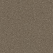 Dream Weaver Star Struck Cashew 4032_530