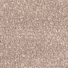 Dream Weaver Star Struck Acorn 4032_858