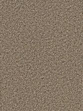 Dream Weaver Simply Blended Five Star 9645_387