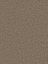 Dream Weaver Simply Blended Platinum 9645_597